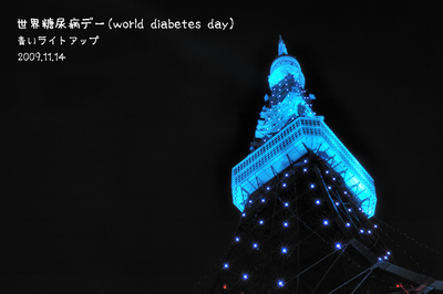 World_Diabetes_Day2009.jpg