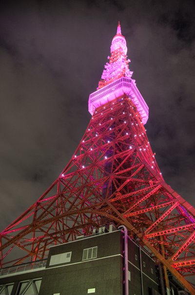 pink_tower09_hdr.jpg